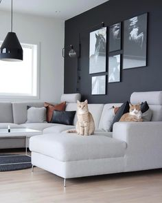 Living Room Color Schemes, Paint Colors For Living Room, Living Room Grey, Room Colors, Interior Design Living Room, Home And Living, Living Room Designs, Living Room Decor, Bedroom Decor