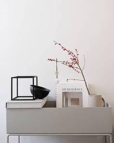 Plant Box, Fern Plant, Room Inspiration, Interior Inspiration, Design Inspiration, Happy Boxing Day, Scandi Style, Fika, Scandinavian Home