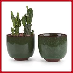 T4U 2.5 Inch Ceramic Ice Crack Zisha Raised Serial succulent Plant Pot/Cactus Plant Pot Flower Pot/Container/Planter Dark green Package 1 Pack of 2 - Lets plant (*Amazon Partner-Link)