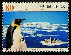 #Penguins #China #PassionGiftStampArt #Art
