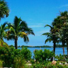 Florida <3 Siesta Key beach