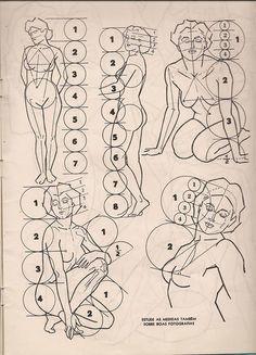 Drawing Body Woman Back Human Anatomy Drawing, Human Figure Drawing, Figure Sketching, Drawing Techniques, Drawing Tutorials, Art Tutorials, Anatomy Sketches, Art Drawings Sketches, Drawing Proportions