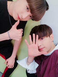 Jin & Been MVP