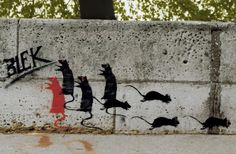 rat stencils by Blek