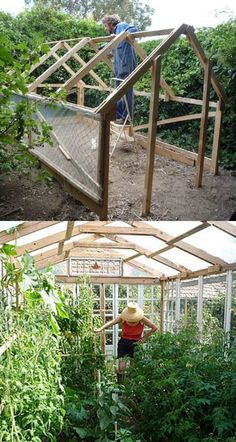 15 Amazing Ideas for Greenhouse Designs: 7. Cabin Greenhouse