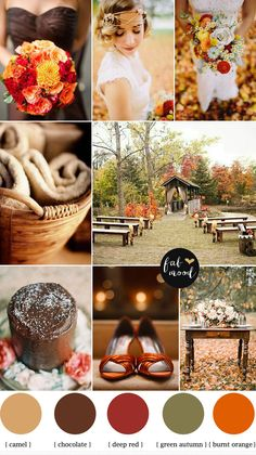This makes me want to get married all over again -- burnt orange,chocolate autumn wedding palette. LOVE THIS!