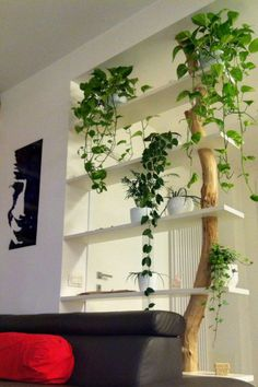 Great Bookcase Design Ideas for A Book Lover - Raumteiler ideen Partition Design, Pinterest Home, Deco Floral, Interior Decorating, Interior Design, Decorating Ideas, Plant Decor, Interior And Exterior, Diy Furniture