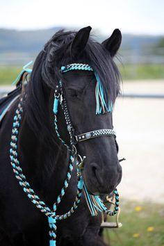 ich fertige mit liebe zum Detail und reiner Handarbeit exclusive Unikate für Pferd &  Hund!