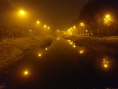 Lights in a foggy morning #Almelo