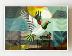 """""""New Zealand, native bird, the \""""Kereru in Flight\"""" print There are 3 size options: A4: 21 x 29.7 cm ~ 8.3 x 11.7 inches A3: 29.7 x 42 cm ~ 11.7 x 16.5 inches A2: 42 x 59.4 cm ~ 16.5 x 23.4 inches, This is the paper size, there is a slim white border around the print so the print is slightly smaller. I have chosen Epson, archival, matt paper and inks for their brilliant colour and detail. The print has my signature on the front and my full name on the back. It is carefully sealed in a stiff card Abstract Shapes, Abstract Art, New Zealand Art, Nz Art, Create Image, Color Splash, Folk Art, Moose Art, Vibrant Colors"""