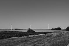 Taken near Fjerritslev in Denmark. Close to the family summerhouse. The danish windmills in the backgorund