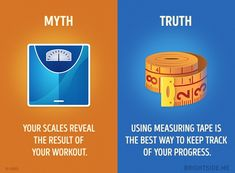 10 Fitness Myths You Need to Stop Believing Fitness Facts, Fitness Motivation Quotes, True Facts, Funny Facts, Knowledge Quotes, Tape Measure, Gain Muscle, Things To Know, Fun Workouts