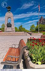 Ottawa National War Memorial Ottawa Canada, O Canada, Canada Travel, Lest We Forget, True North, Soldiers, Ontario, Places Ive Been, Coast