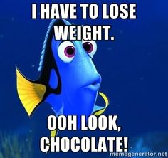 I have to lose weight. Oh look, Chocolate! #chocolate