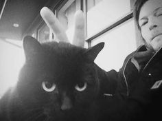 Norman Reedus and his cat Eyes in the Dark (or Fatso) Just when I thought I couldn't possibly like him more!