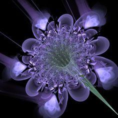 Violeta   raw fractal *beautiful*