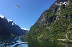 10 Reasons to Visit Norway Right Now Visit Norway, Norway Travel, Lofoten, Fishing Villages, Usa Today, Right Now, Trip Planning, Kayaking, Adventure Travel