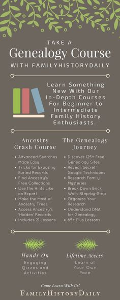 Ready to take your genealogy research to the next level? Want to learn more about genealogy organization? Or how about ancestry DNA tests? An exciting genealogy course is the place to start learning something new about family history research today! Genealogy Websites, Genealogy Forms, Genealogy Research, Family Genealogy, Genealogy Chart, Family Tree Research, Genealogy Organization, Organizing, Ancestry Dna