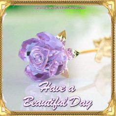 Have a lovely day!'