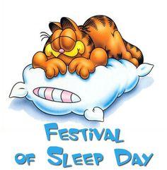 January 3 is Festival of Sleep Day