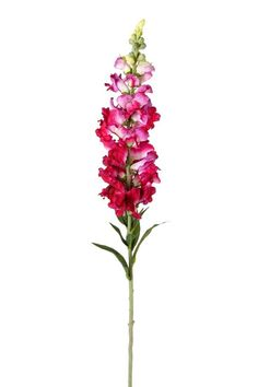 Fleur Natural Touch Snapdragon (Set of 6)