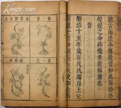 Compendium of Materia Medica, one of the 'top 10 classics on traditional Chinese medicine' by China.org.cn.