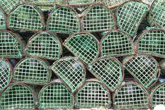 Fish traps #Portugal