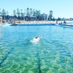 Autumn laps. #deewhybeach #autumm #oceanandesrth #environment #sydney #australia #thenaturalworld #nature #oceanpool #earth #sustainability #lovelife #rockpool Re-post by Hold With Hope