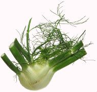 Recipes for fennel - Salat Fennel, Celery, Herbs, Vegetables, Plants, September, German Recipes, Pumpkin Bread Recipes, German Cuisine