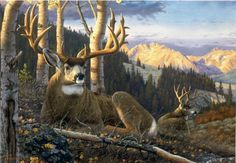 """Highlights Of Autumn"" -mansanarez Wildlife Art by Tom Mansanarez, limited edition prints featuring elk, deer, antelope, moose, cats, cougar, mountain lion, hounds, horses, and bobcats. - Limited Edition Prints"