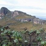 Mount Elgon National Park is one of the most attractive destination of Uganda that tempts plenty of people.