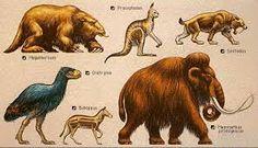 Fauna característica del periodo cuaternario