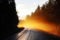 Free Image on Pixabay - Road, Mist, Sunrise, Early Morning Sunrise Wallpaper, Nature Wallpaper, Hd Wallpaper, Carinthia, Morning Sunrise, Morning Images, Natural Wonders, Free Pictures, Mists