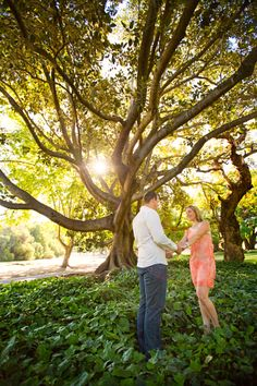 Kelly and Brad had their pre-wedding shoot at Hyde Park, one of the most beautiful parks in Perth where we spent a relaxing time capturing special moments. Beautiful Park, Most Beautiful, Sun Flare, Hyde Park, Mustard Seed, Wedding Shoot, Perth, Engagement Photos, Photograph
