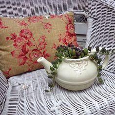#succugram #suculentas #succulover #succulove #succulents #teapot #teapotgarden #succulentaddict #lovesucculents