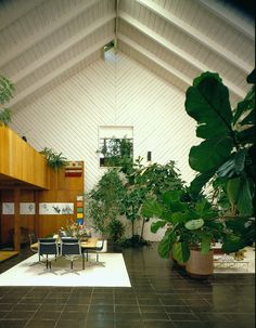 Photo by Toshi Yoshimi, courtesy Elaine Jones. Fred Fisher on A. Quincy Jones by Emily Young. Browse inspirational photos of modern homes. From midcentury modern to prefab housing and renovations, these stylish spaces suit every taste. Big Indoor Plants, Indoor Garden, Home And Garden, Large Plants, Indoor Trees, Interior Architecture, Interior And Exterior, Interior Design, Quincy Jones