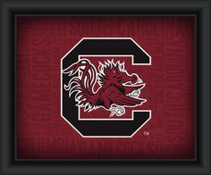 "University of South Carolina ""College Logo Plus Word Clouds""-15 x18 Framed Print"