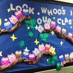 Owl bulletin board -Look whoo's in our class.Would work for classroom door Owl Bulletin Boards, Back To School Bulletin Boards, September Bulletin Boards, Birthday Bulletin Boards, Fall Bulliten Boards, Bullentin Boards, Owl Theme Classroom, Classroom Ideas, Birthday Display In Classroom
