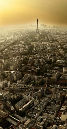 Paris from Montparnasse Tower.