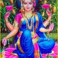 Lakshmi is the Hindu god of wealth, fortune & prosperity and also the wife of Lord Vishnu. Here is a collection of Goddess Lakshmi Images & HD wallpapers. Lakshmi Photos, Lakshmi Images, Durga Kali, Meditation France, Pooja Rooms, Goddess Lakshmi, Lord Vishnu, Hindu Deities, Indian Gods