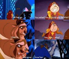 The importance of inner beauty in the story of beauty and the beast
