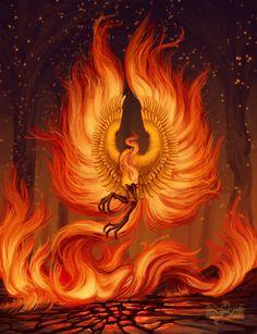 cool pokemon pictures by VulcanusKnight Phoenix Artwork, Phoenix Wallpaper, Phoenix Images, Phoenix Bird Tattoos, Phoenix Tattoo Design, Fantasy Creatures, Mythical Creatures, Cool Pokemon Pictures, Dragons