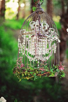 Chandelier encased in a birdcage- love this for a woodland theme!