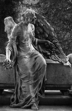 Angels have no philosophy but love. Cemetery Angels, Cemetery Statues, Cemetery Art, Entertaining Angels, Old Cemeteries, Graveyards, I Believe In Angels, Chef D Oeuvre, Guardian Angels