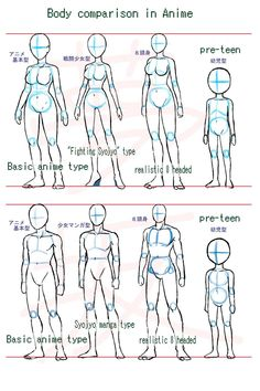 Anime body style comparison by Yumezaka.deviantart.com on @deviantART