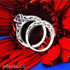 newportbeach,malibu,special,bride,coronadelmar,beverlyhills,weddingplanner,whitegold,rings,lovemyromance,glamourous,engagement,luxury,jewelry,diamond,weddingrings,engagementring,brea,orangecounty,luxurylifestyle,wedding,finejewelry,laguna,elegance,wife,valentinesday,diamonds,love