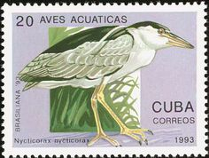 Black-crowned Night Heron stamps - mainly images - gallery format