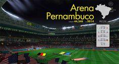 Recife Arena Pernambuco (40,604 seats)