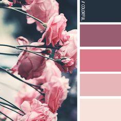 // COLORFUL. 0004 - PHOTOCREDIT:  UNSPLASH @alinasofia #kleur #kleurpaletten #kleurpallet #color #colorpalette #colorpalletes #colour #colourpalette #colourpalettes