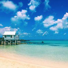 Monday blues #wearebda #bermuda #bermudablogger #islandlife by alairewaterlust